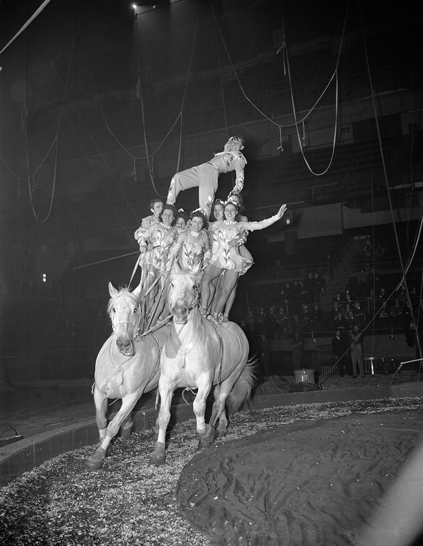 . One of the Ringling Bros. and Barnum and Bailey Circus acts to go through its paces at a dress rehearsal in Madison Square Garden in New York, April 4, 1944 was the Loyal-Repensky troupe of riding performers whose members are grouped on two cantering white houses. The Big Show opens on April 5. (AP Photo/Anthony Camerano)