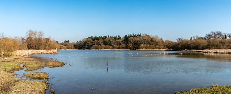 Warnham Lake-12.jpg