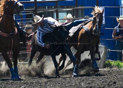 Steer Wrestling 2011