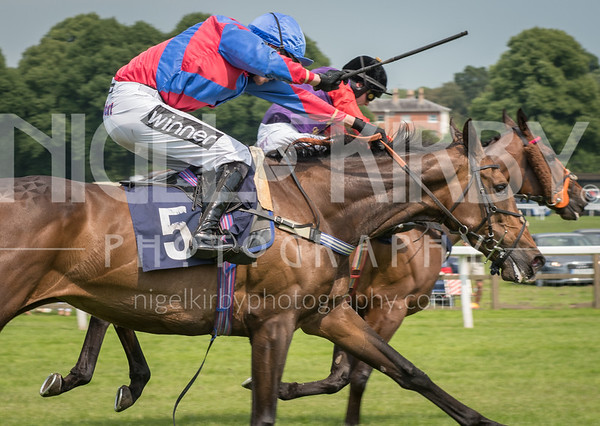 Worcester Races - Mon 11 June 2018