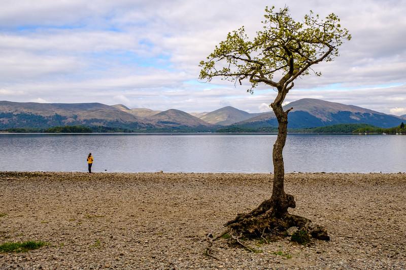 20190505 Loch Lomond 032.jpg