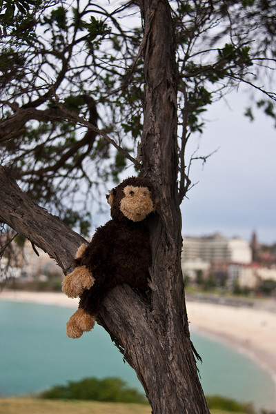 SydneyAustralia_August2009-187.jpg