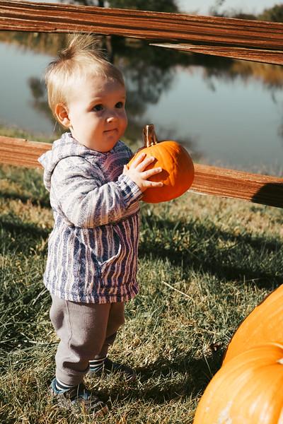 20191026 Pumpkin Patch