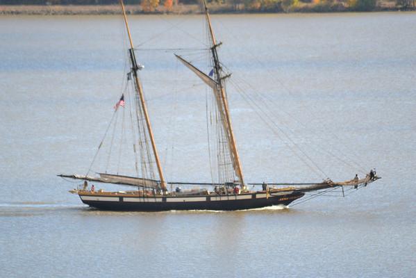 Lynx 11/2/12 Newburgh NY