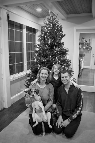 Reggie 2016 Christmas