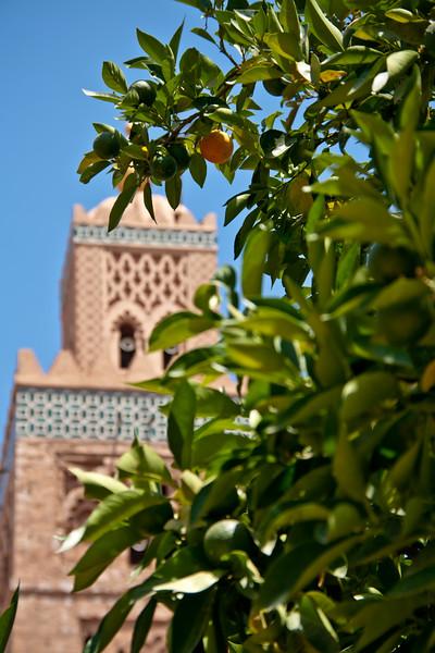 morocco_6207012516_o.jpg