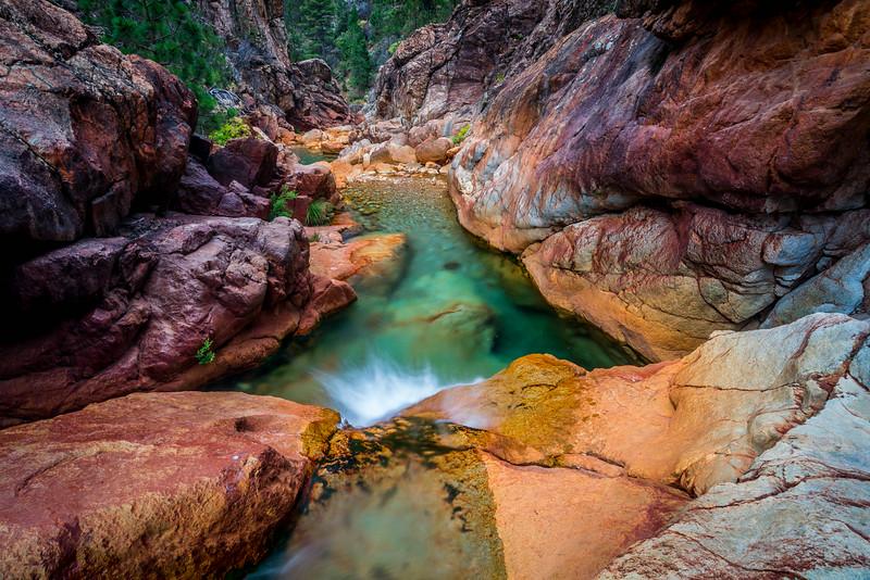 Towards Destiny - Shasta National Forest, CA, USA