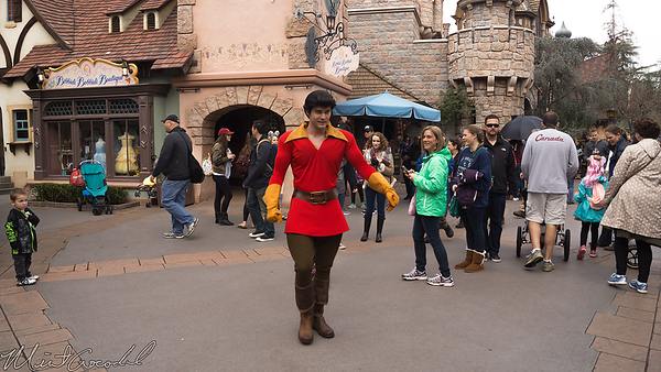 Disneyland Resort, Disneyland, Fantasyland, Beauty and the Beast, Beauty, Beast, Gaston