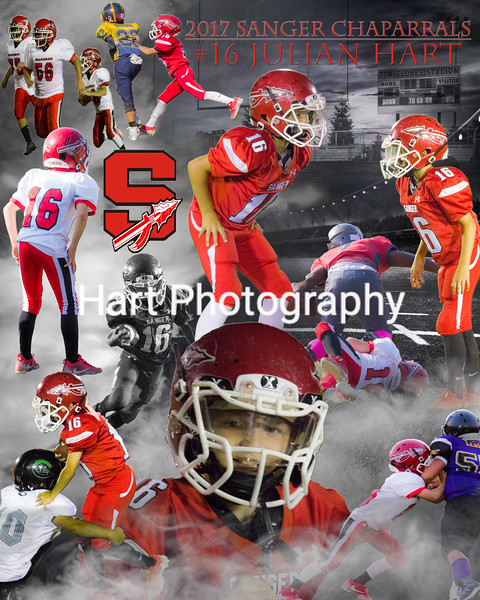 Sports Collages