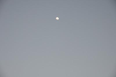 2010-01-26 (by Eye-Fi)