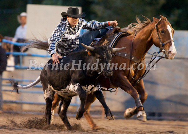 Steer Wrestling Finals