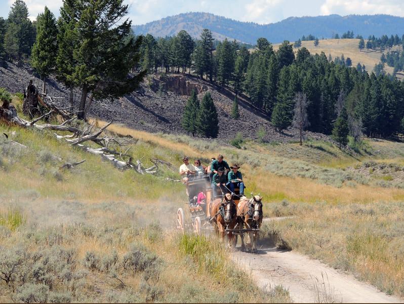 Yellowstone (63).jpg