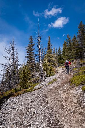 2019-04-21 Mt Baldy
