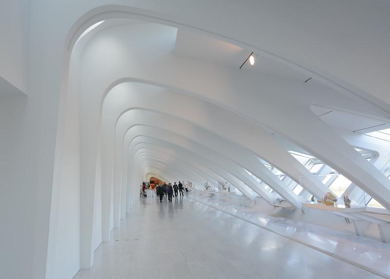 Z_CalatravaDec2018 019.jpg