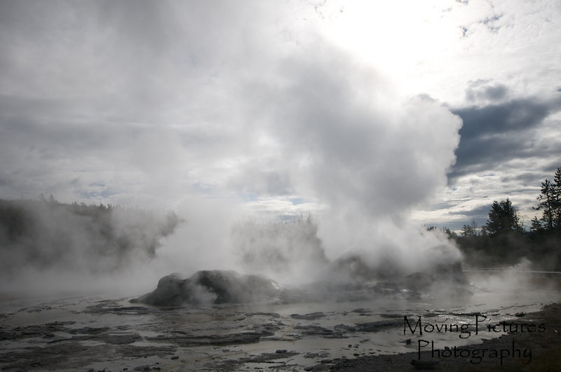 Yellowstone NP - Grotto geyser