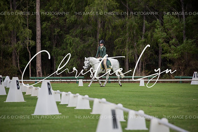 Margaret River Dressage 23rd April 2017 12pm-1pm