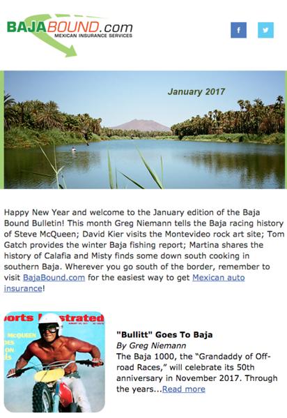 Headed photo for Baja Bound Insurance monthly newsletter. Image from San Ignacio, Baja.