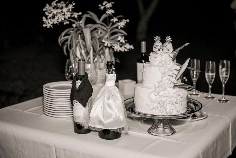 Kona Wedding photos-0173McMillen & Renz Wedding 6-10-2.jpg