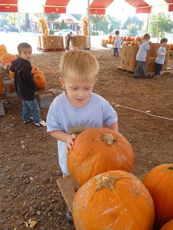 TSGI pumpkin patch 2013
