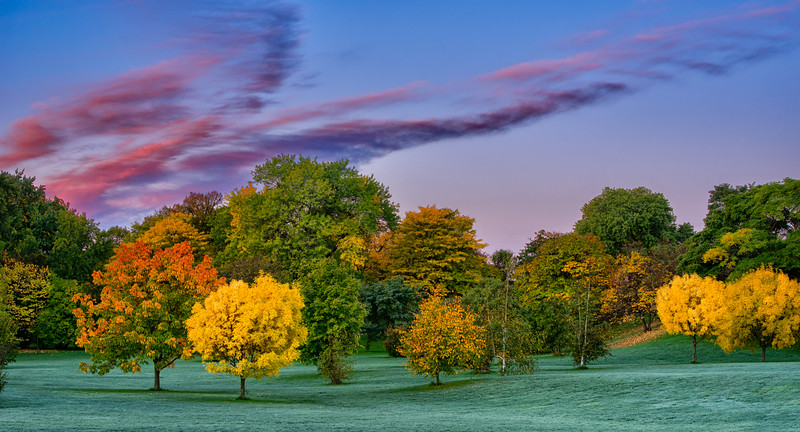 Autumn colours_Oct 8-2012_01-Edit.jpg