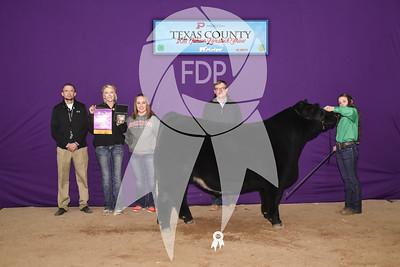 Texas Co. Jr. Livestock Show