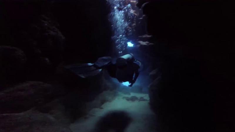 Roatan dives cut 2.mp4