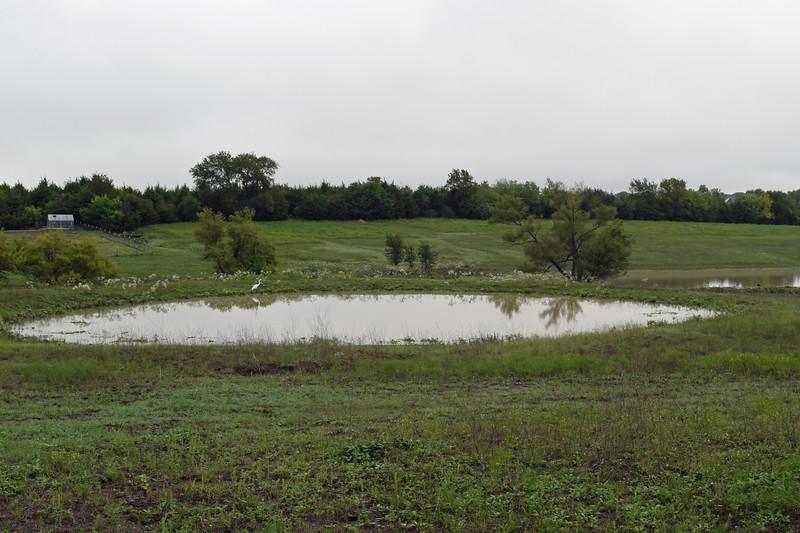2018 Dove Hill Ranch (85).JPG