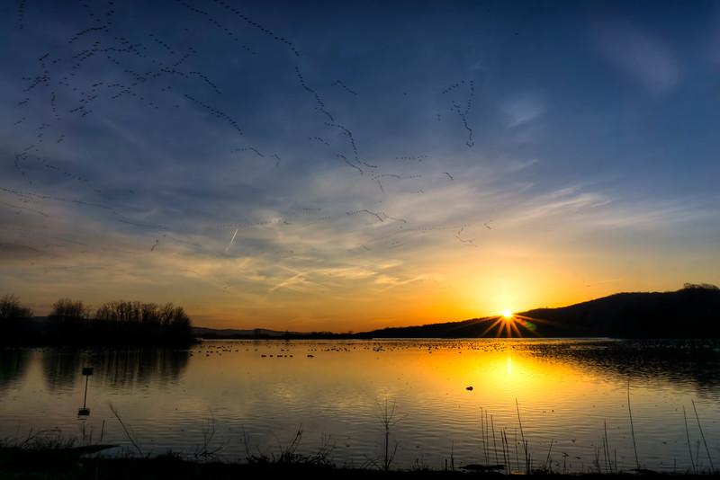 middlecreek 2016 - sunrise over lake(p).jpg