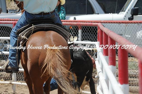 Sierra County 6-23-13 Steer Wrestling