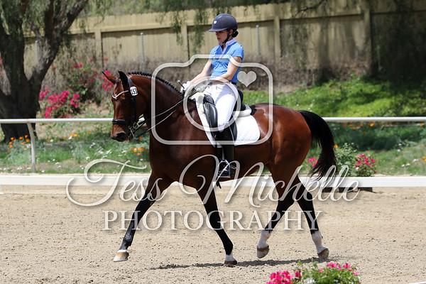Spirit Equestrian April 2018