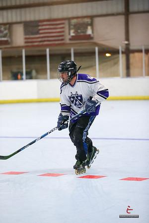 2013 D9 Roller Hockey