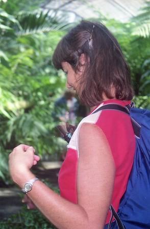 1989 Cairns