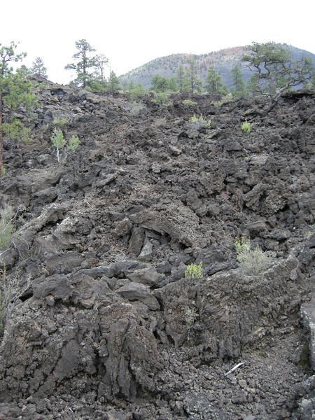 A recent lava flow near Sunset Crater.