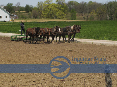 Amish farmers working the field, Malabar Farm and Mohican State Park.All in one beautiful day, April 2012
