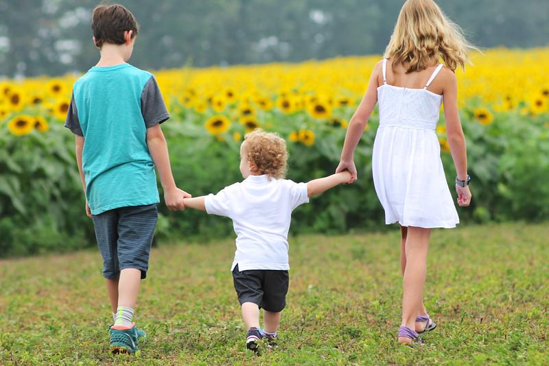 FamilySunflowers_ 84.jpg