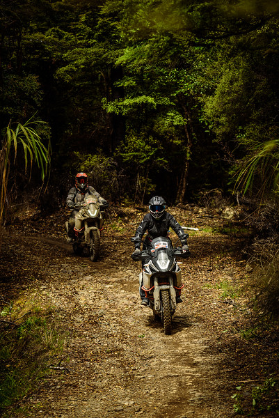 2019 KTM New Zealand Adventure Rallye (1323).jpg