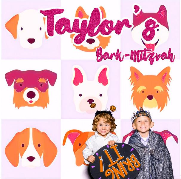 Taylors pawmitzvah-20802.jpg