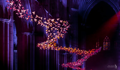 """The Doves (""""Les Colombes"""")"""