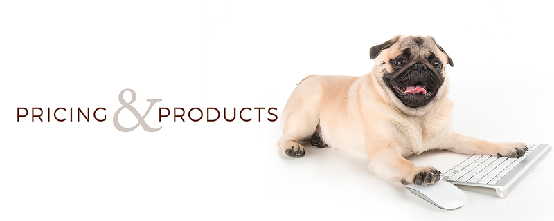 pricing and products banner  .png