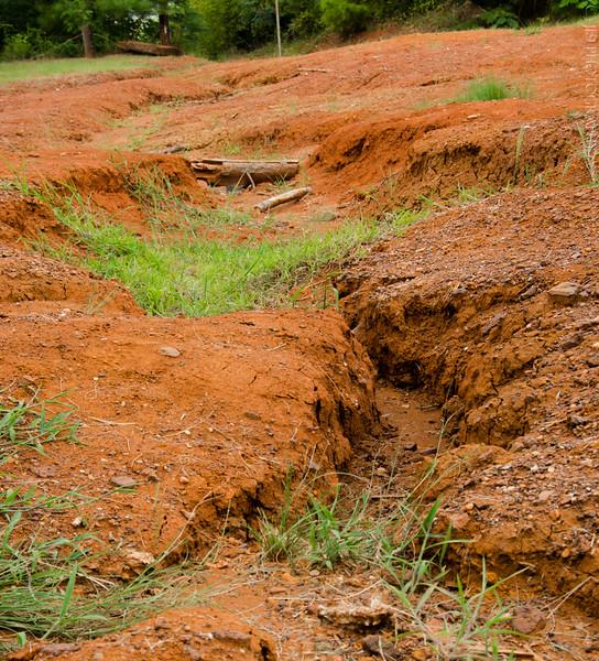 Orange Dirt