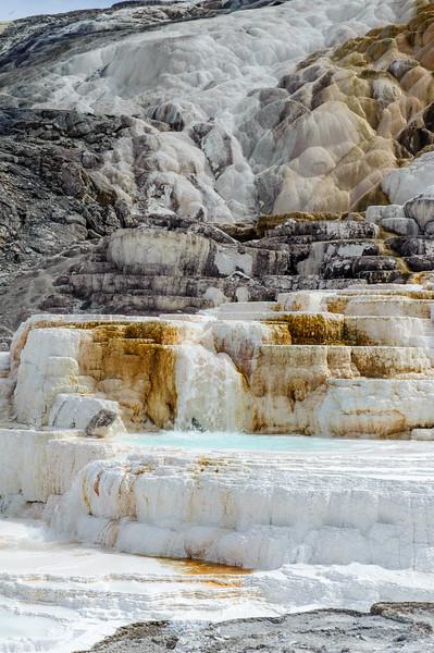 20130511-12 Yellowstone 110.jpg