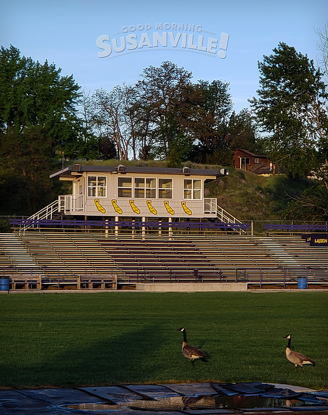 052419arnoldfield.png