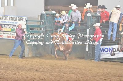 09-21-14 Steer Riding Saddle