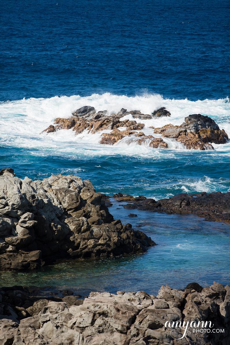 hawaii_amyannphoto_18