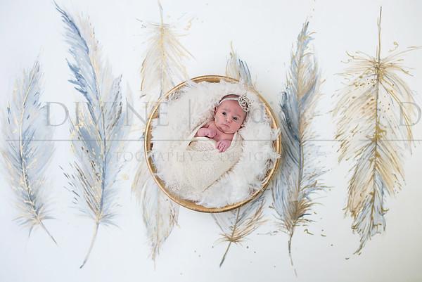 c. newborn