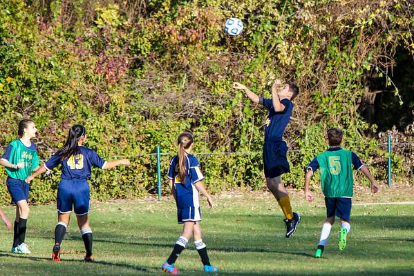 Nov 20 - Soccer Gold vs Blue