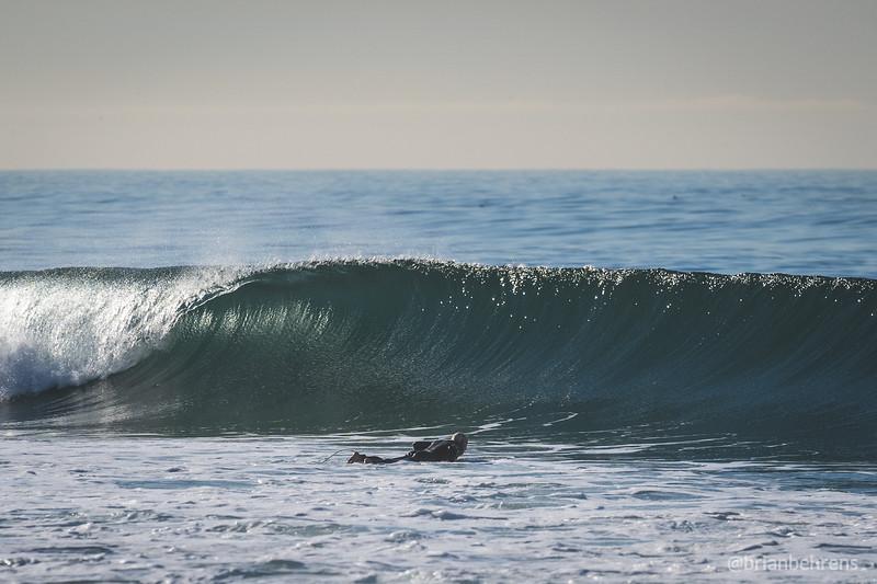 ocean-park-22.jpg