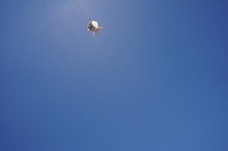 Brian Ferguson at Skydive Utah - 123.JPG