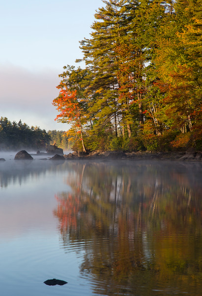 Foggy Reflections_2365