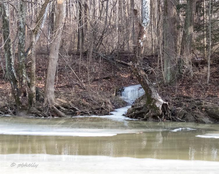 melting river 011118-4.jpg